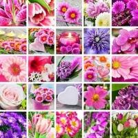 Farbstimmung Blumen