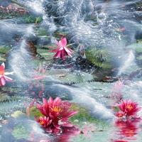 Wanddeko Lotusblüten im Meer