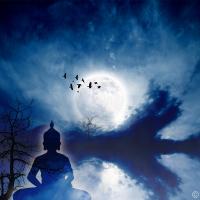 Wanddeko Moonlight Fotoprodukt