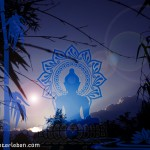 Wallpaper Buddha-Bambus 1280x1042px