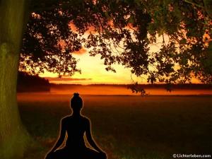 Yogi_meditiert_unter_Bodhi_Baum_1280x1042px