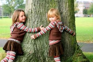 Wohnen mit der Natur Baum