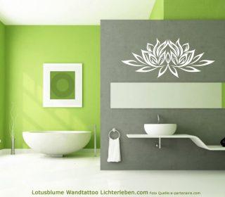 Lotusblüte Lotusblume