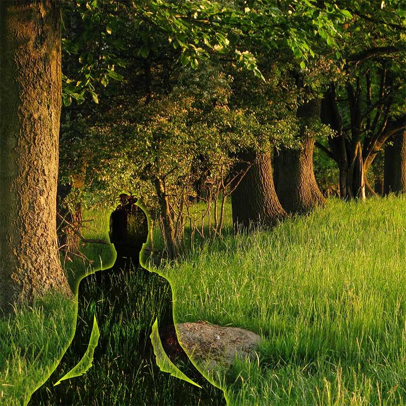 Yoga Wanddeko
