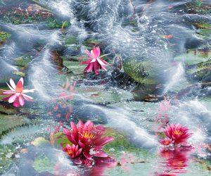 Lotusblüten im Meer Fotoprodukt Fotoleinwand